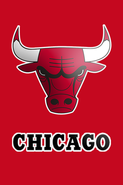 Chicago Bulls Shop Logo